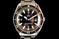 omega Seamaster 300 Acciaio 166024